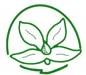 Asociación Naam Sangat - Loto verde